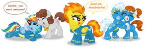 Commission:  Well Done, Wonderbolts!