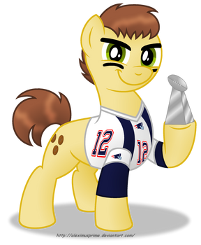 Commission:  Tom Brady in Equestria by AleximusPrime