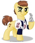 Commission:  Tom Brady in Equestria