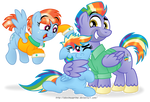 We're so proud of our little Dashie!