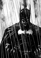 Batman - Mad in the Rain by Botonet