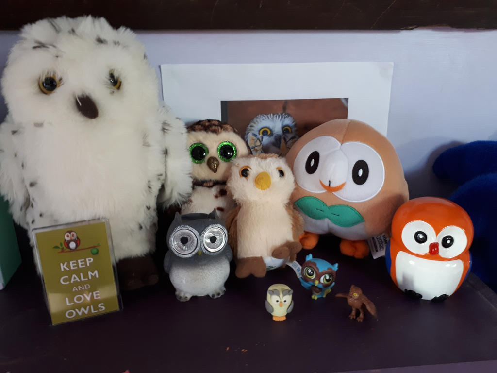 I think I need more owls by OggyxOlivialover
