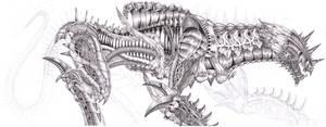 Jon's Dragon 2
