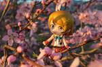 Sunny Spring - Hanayo by TonioSteiner