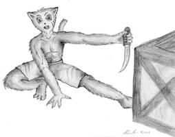 bobcat in training