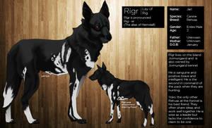 Rigr Profile