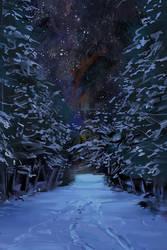 dark pines by fluffySlipper