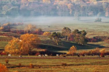 Moldavian Lands.3 by sagefille20