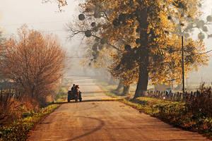 Moldavian Lands.4