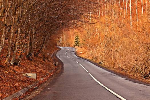 Romanian Roads.1