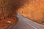 Romanian Roads.1 by sagefille20