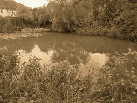 Pond By The Chequers
