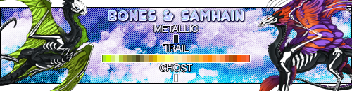 bones_samhain_by_deathsshade-dc6x0hz.png