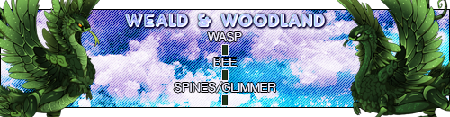 weald_woodland_by_deathsshade-dc6x0qn.png