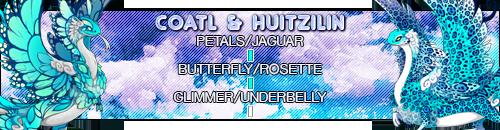coatl_huitzilin_by_deathsshade-dc6x1eh.png