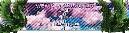 weald_woodland_by_deathsshade-dcnui0m.png