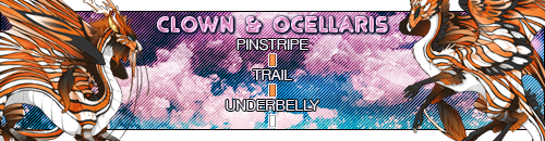 clown_ocellaris_by_deathsshade-dcnumes.png