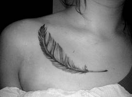 Feather by thingthatcandoit