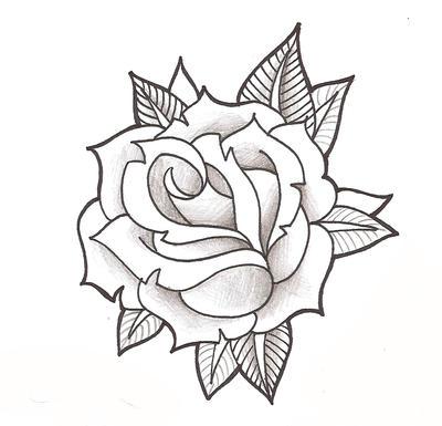 rose wallpaper free download mobile