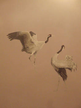 Port cranes in love dance... hehehe