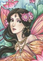 Lotus Fairy by MeredithDillman