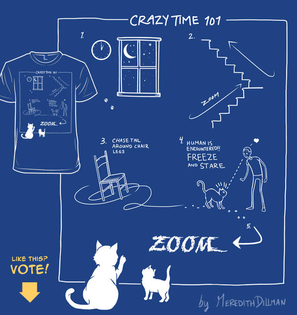 Crazy Time 101 - woot derby entry by MeredithDillman