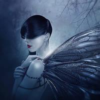 Wings Of Fantasy by alkab-art