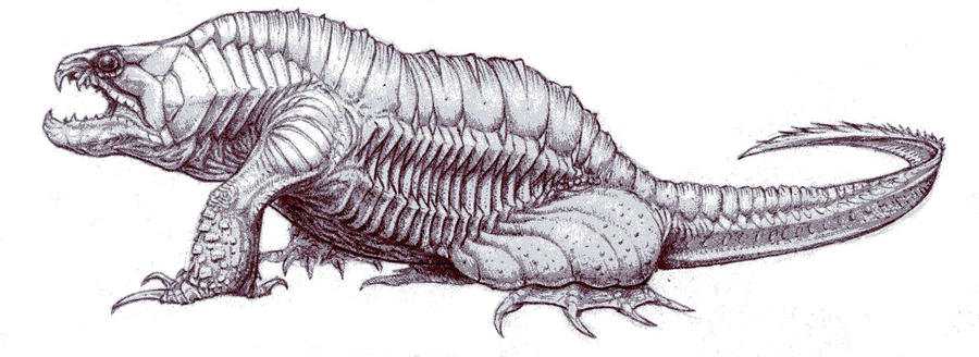 Flabby by Embyrwane
