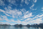 skies VII