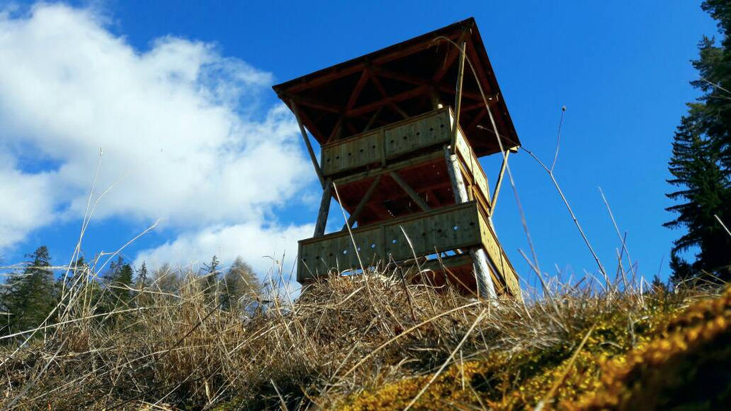 Lookout Tower by Trainl