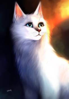 Fur of Crystal