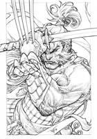 Wolverine and katanas by pant