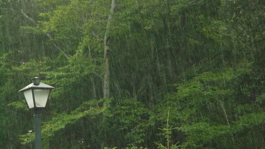 Rain by DeathLee28