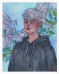 Commission : Celeste
