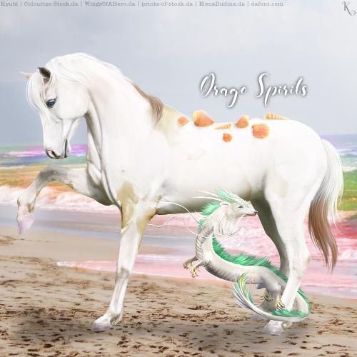 Drago Spirits