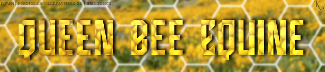 Queen Bee Equine Set (1)