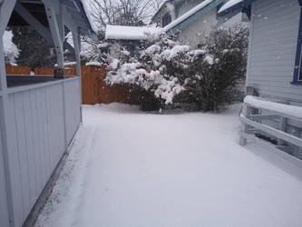 Snow in my backyard by RussellMGoodwin