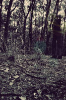 Phantom by wollie13