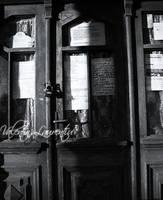 dark door by wollie13