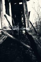 Doar o alta casa batrana by wollie13