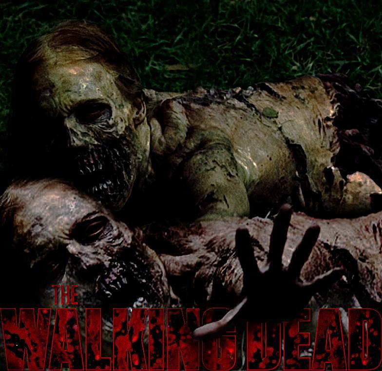 The Walking Dead by thinminmeg