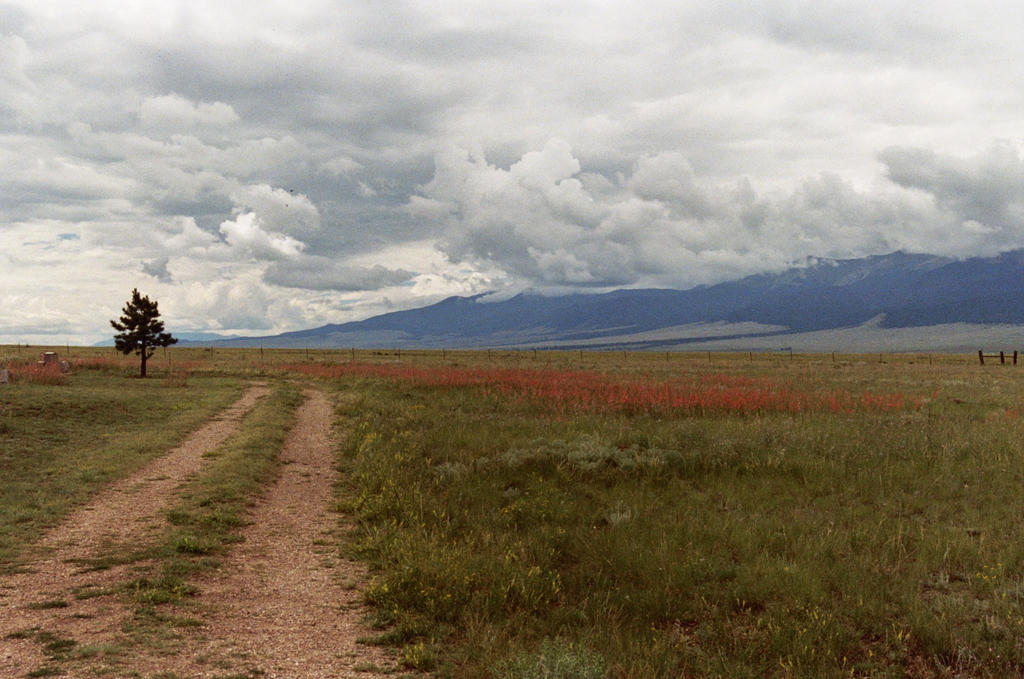 westcliffe chat Do you want to write a review about native woods garden center in westcliffe, colorado  perhaps you like a good old fashioned chat and would prefer to phone.