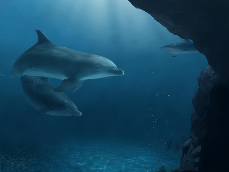 Undersea by Gee-X
