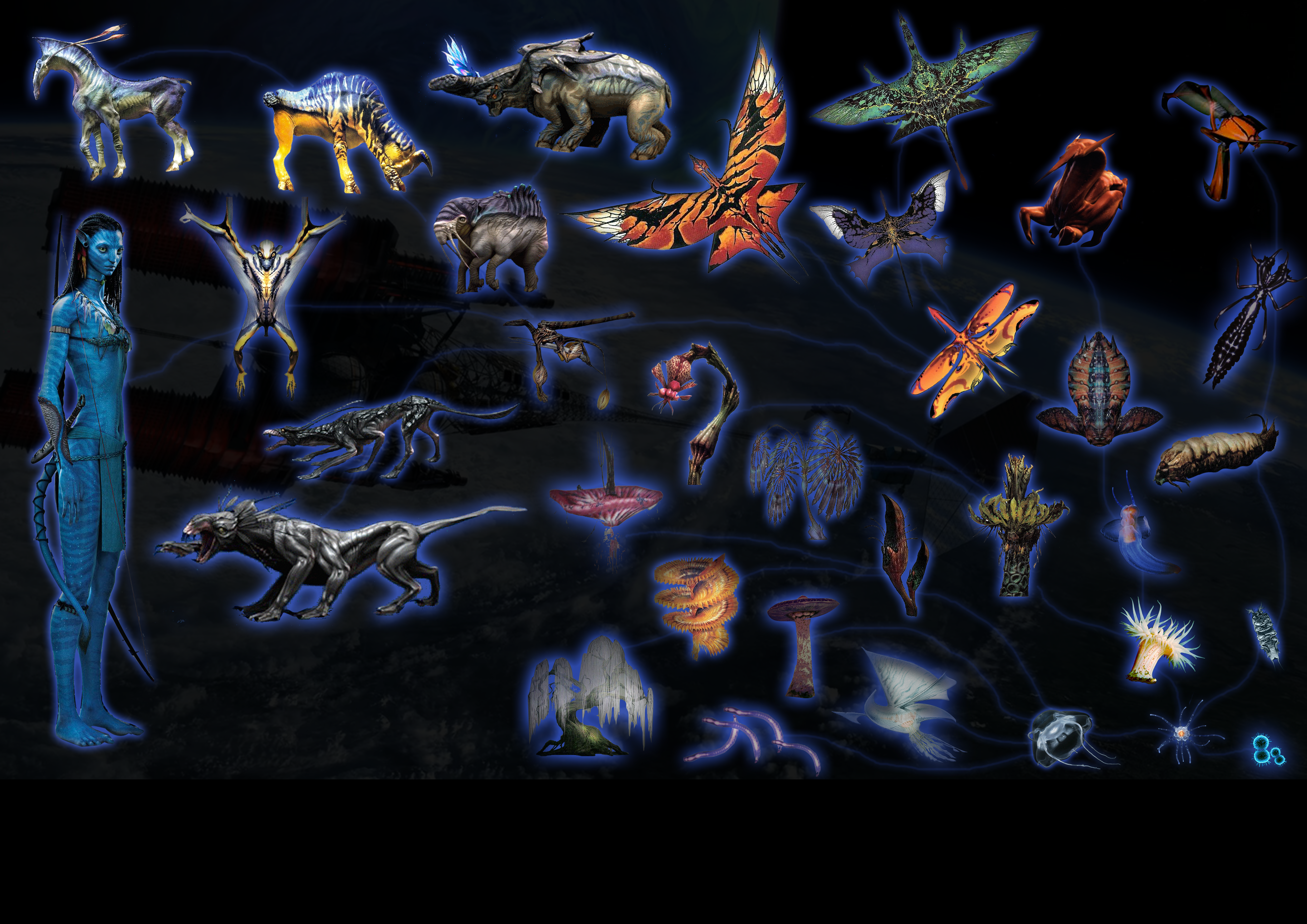 Pandora S Evolution By