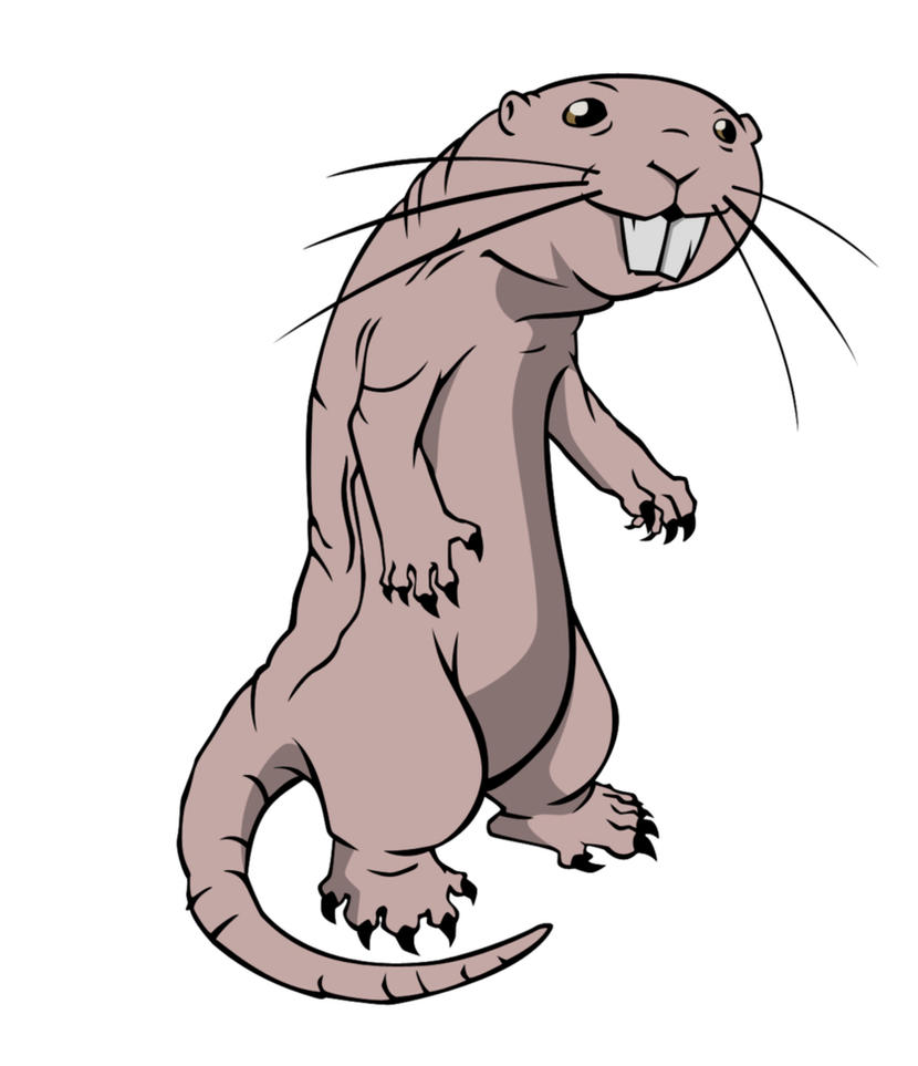 Rufus the super mole rat by zimonini on deviantart rufus the super mole rat by zimonini stopboris Image collections