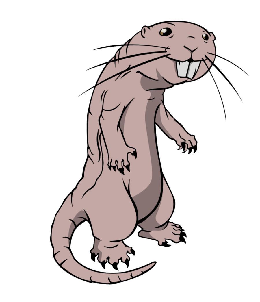 Cartoon naked mole rats