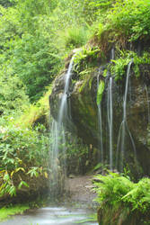 Blarney Garden waterfall