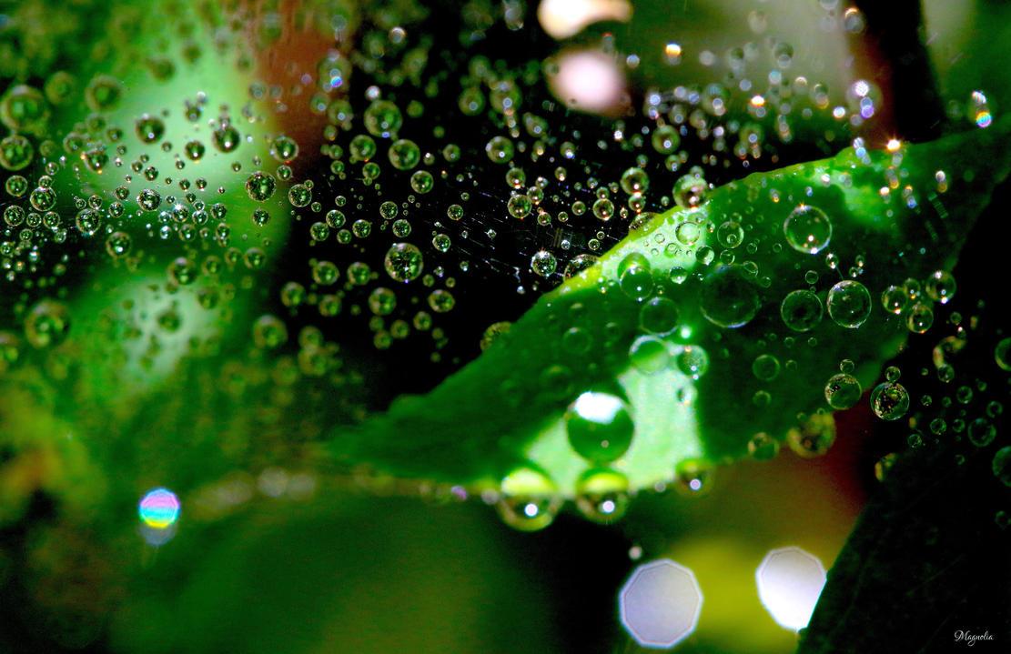 Green Web Drops by FallOut99