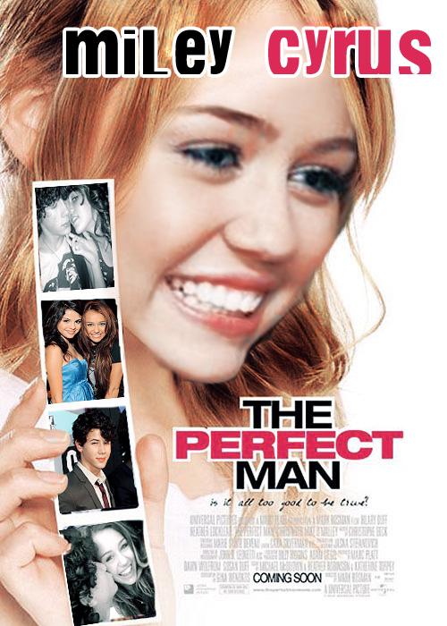 Người Đàn Ông Hoàn Hảo 2013 - A Perfect Man - 2013
