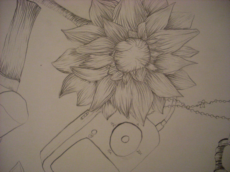Traditional Flower Line Drawing : Cross contour flower by the necroneko on deviantart